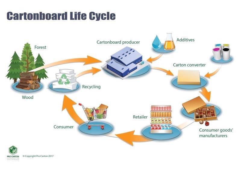 Жизненный цикл упаковки из картона