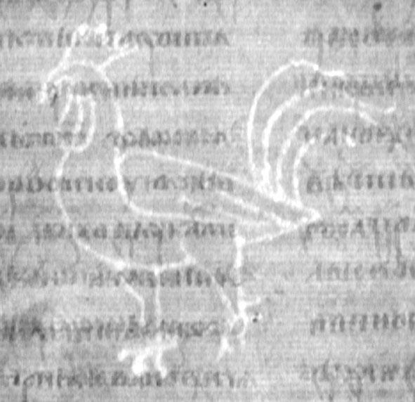 вид филиранного водяного знака в бумаге