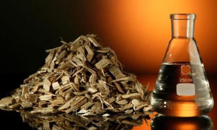 Биопереработка древесины